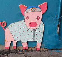 Shirted Rainbow Pig © by Ethna Gillespie