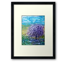 Purple Blossoms Framed Print