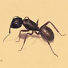 Ant by Lars Furtwaengler