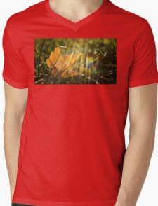 Yellow Maple Leaf in the Grass Mens V-Neck T-Shirt