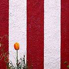 Temple Wall © by Ethna Gillespie