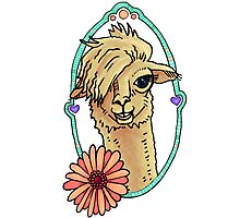 Alpaca with flower n hearts Photographic Print