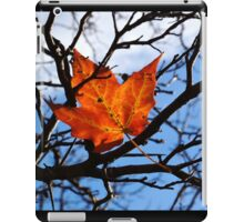 Fallen Red Maple Leaf iPad Case/Skin