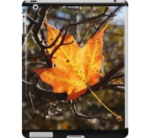 Fallen Maple Leaf iPad Case/Skin