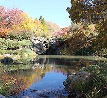 Autumn Reflection 2 by Kume Bryant