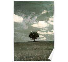 Tuscany tree Poster
