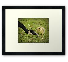 I don't want to eat my veggies Framed Print