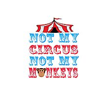 Not My Circus Not My Monkeys Photographic Print