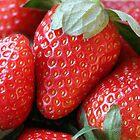 Strawberries by Tiffany Dryburgh