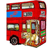 Elephant Bus 578 Photographic Print