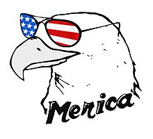 Eagle America Photographic Print