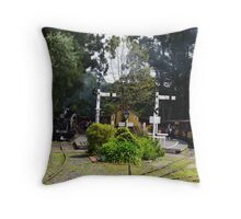 Menzies Creek Station Victoria Australia Throw Pillow