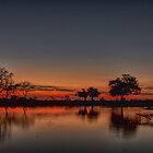 African Red Sunset by Marylou Badeaux
