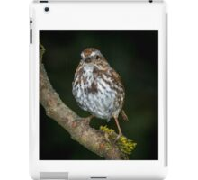 Song Sparrow iPad Case/Skin