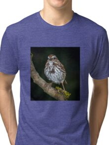 Song Sparrow Tri-blend T-Shirt