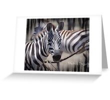 Seeing Stripes Greeting Card