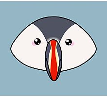 Cute little puffin Photographic Print