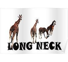 Long neck Poster