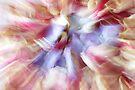 Petals - JUSTART © by JUSTART