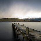 Lake Hayes Jetty Part III  by earlcooknz