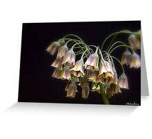 Fairy Bells Greeting Card