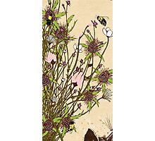 Wild Flowers Part 2 Photographic Print