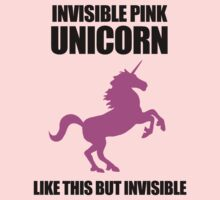 Invisible Pink Unicorn Kids Clothes