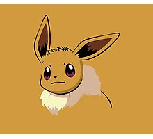 Pokemon - Eevee Photographic Print
