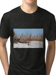 Philosophical Questions Tri-blend T-Shirt