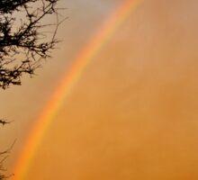 Rainbow at Dusk Sticker
