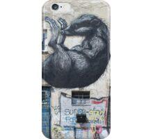 Graffiti Raccoon iPhone Case/Skin