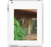 neighborhood favorite iPad Case/Skin