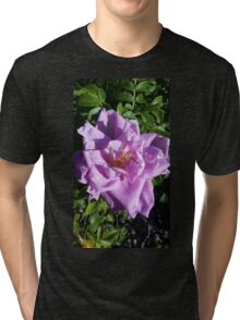 Pretty Purple Rose Tri-blend T-Shirt