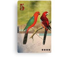 Animal Collection by Elo -- Birds Canvas Print