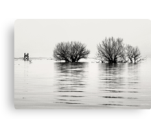 The Weeping Meadow Canvas Print