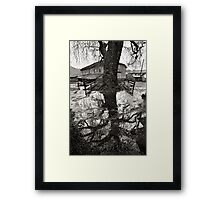 Back to my roots Framed Print