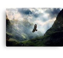 The Light of Flying Canvas Print