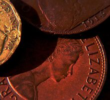 Old Coins Close Up by dfgumby
