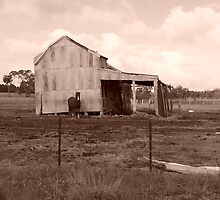 The Old Shed, Kilmore Vic Australia by Margaret Morgan (Watkins)