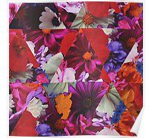 Floral DeRangement  Poster