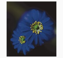 Royal Blue Asters - Orton Effect Kids Clothes