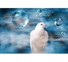 Freebird Photographic Print