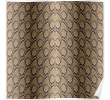 Golden Brown Python Snake Skin Reptile Scales Poster