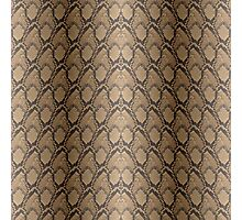 Golden Brown Python Snake Skin Reptile Scales Photographic Print