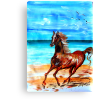 Happy horse running by the beach Canvas Print