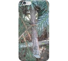 Neighbors front yard iPhone Case/Skin