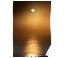The Lifegiving Sun Sneaks Through the Coastal Northern California Fog Poster