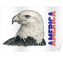 "Eagle ""America"" (vertical)(stars & stripes) Poster"