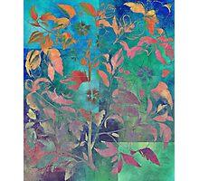 FLOWERING PLANT Photographic Print