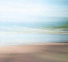 Summer Breeze by metriognome